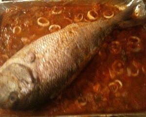 سمكة معمرة بالكروفيت