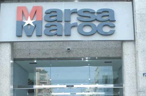 -شركة-مرسى-ماروك