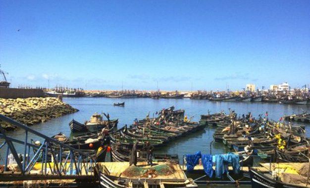 أزيد من 30 قاربا ينشط بميناء الوطية في وضعية غير قانونية
