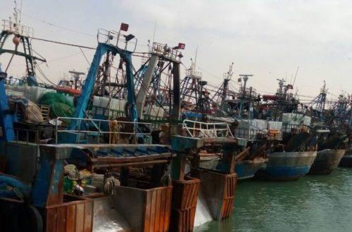 ميناء العيون (1)