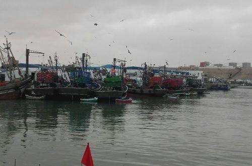 ميناء طانطان (3)