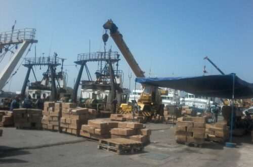عودة سفن أعالي البحار إلى ميناء أكادير (1)