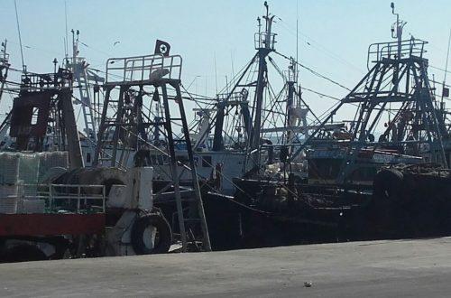 الصيد بالجر