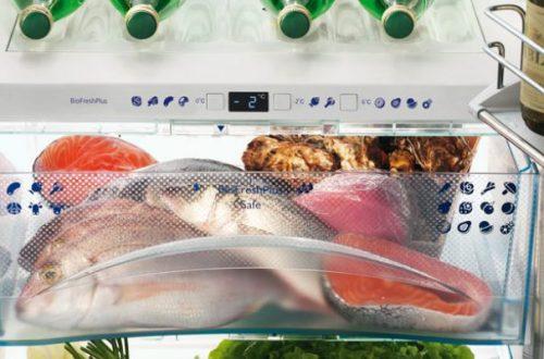 أسماك في الثلاجة