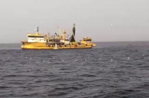 سفن صيد تركية