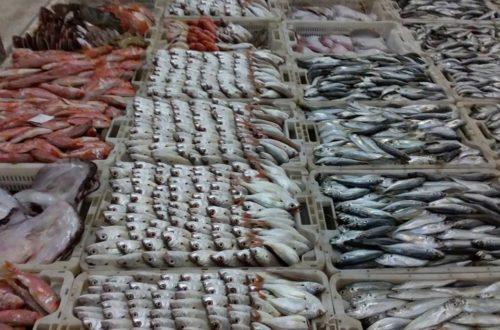 سوق السمك المضيق (1)