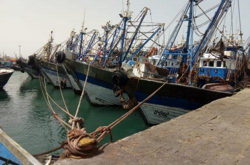 ميناء الداخلة (7)
