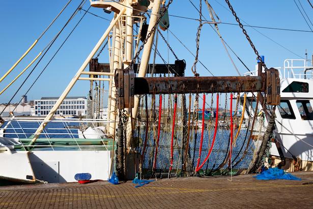 Bateau pour la pêche électrique © Breedfoto