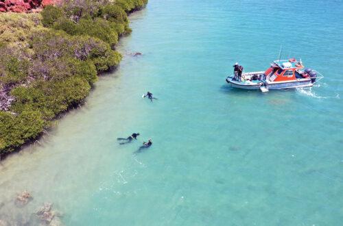 اكتشاف-مواقع-لسكان-أستراليا-الأصليين-غمرتها-المياه