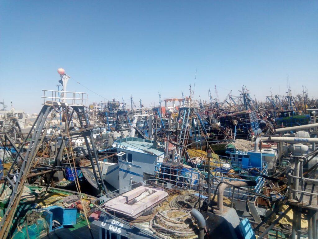 ميناء _المرسى_ العيون