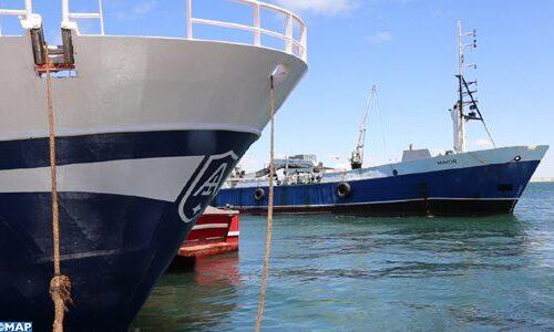 port-dakhla-504x300